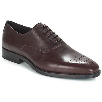 Chaussures Homme Richelieu André DIAMOND Bordeaux