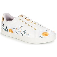 Chaussures Femme Baskets basses André COROLLE Blanc
