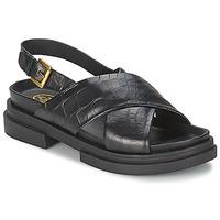Chaussures Femme Sandales et Nu-pieds Ash SUE Noir