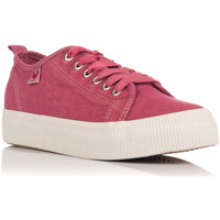 Chaussures Baskets basses Pitas  rouge
