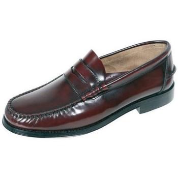 Chaussures Homme Mocassins Urban Jungles  Autres