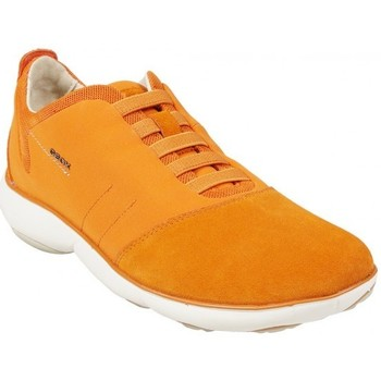 Chaussures Homme Baskets basses Geox Basket U Nebula B Orange