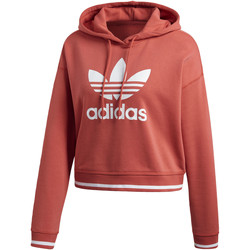 Vêtements Femme Sweats adidas Originals Sweat-shirt à capuche Active Icons red