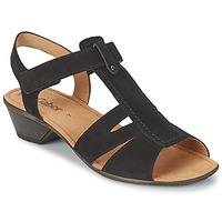 Chaussures Femme Sandales et Nu-pieds Gabor STEPHANIE Noir