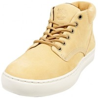 Chaussures Homme Baskets mode Timberland Adventure Cupsol DOE Beige