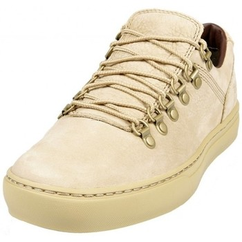 Chaussures Homme Baskets mode Timberland Adventure Cupsole Alpi Travertine Beige
