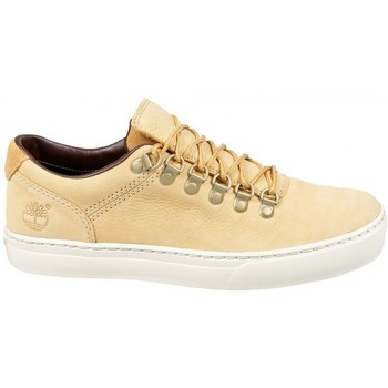 Chaussures Homme Baskets basses Timberland Adventure Cupsole Alpi Doe Beige