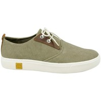 Chaussures Homme Baskets basses Timberland Amherst Canvas PTO Canteen Beige