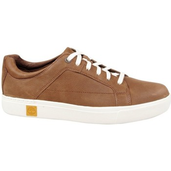 Chaussures Homme Baskets basses Timberland Amherst Oxford Potting Soil Marron