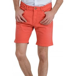 Vêtements Homme Shorts / Bermudas Petrol Industries SHO538 Col 356 Rouge