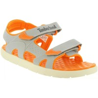 Chaussures Enfant Sandales et Nu-pieds Timberland A1QEQ PERKINS Gris