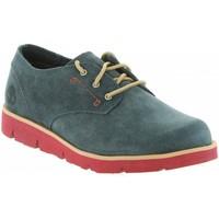 Chaussures Garçon Baskets basses Timberland A1M2C RADFORD Azul