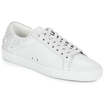 ef09adafcb9df3 Chaussures Femme Baskets basses Ash DAZED Blanc
