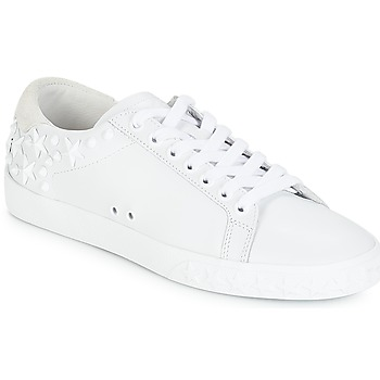 the latest a0b2c c4784 Chaussures Femme Baskets basses Ash DAZED Blanc