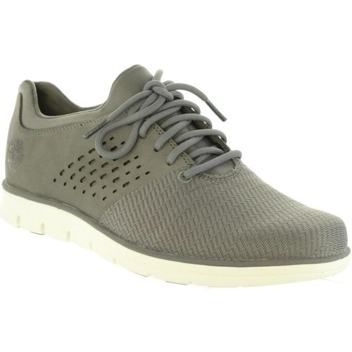 chaussure timberland bradstreet grise