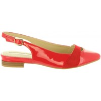 Chaussures Femme Ballerines / babies Maria Mare 66977 Rojo