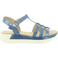 Chaussures Femme Sandales et Nu-pieds Maria Mare 67059 Azul