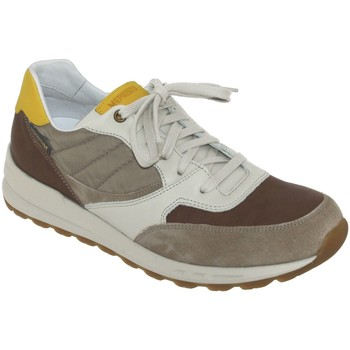 Chaussures Homme Baskets basses Mephisto Telvin Multi Marron