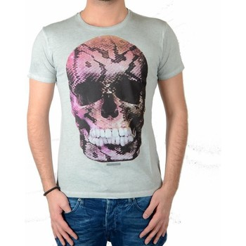 Vêtements Homme T-shirts manches courtes Japan Rags Tee Shirt  Snake Gris