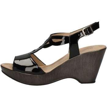 Chaussures Femme Sandales et Nu-pieds Donna Soft 7350 NOIR