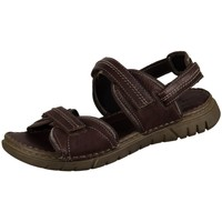 Chaussures Homme Sandales et Nu-pieds Josef Seibel Jim Marron