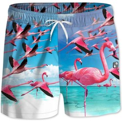 Vêtements Homme Maillots / Shorts de bain Freegun Boxer Bain Flottant Homme FCEFLA Bleu Rose bleu