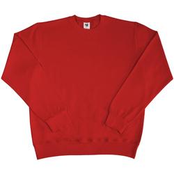 Vêtements Homme Sweats Sg SG20 Rouge