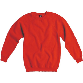 Vêtements Homme Sweats Sg Raglan Rouge