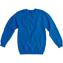 Vêtements Homme Sweats Sg Raglan Bleu royal