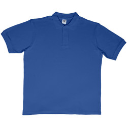 Vêtements Homme T-shirts & Polos Sg SG50 Bleu roi