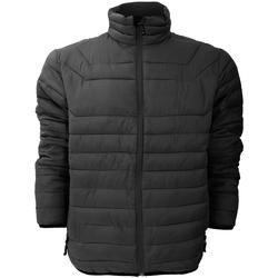 Vêtements Homme Doudounes Stormtech Altitude Noir