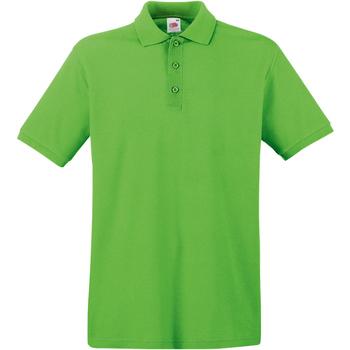 Vêtements Homme Polos manches courtes Fruit Of The Loom Premium Vert clair