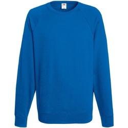 Vêtements Homme Sweats Fruit Of The Loom 62138 Bleu roi