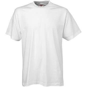 Vêtements Homme T-shirts manches courtes Tee Jays TJ8000 Blanc