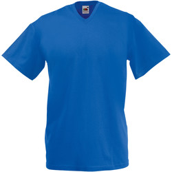 Vêtements Homme T-shirts manches courtes Fruit Of The Loom 61066 Bleu roi