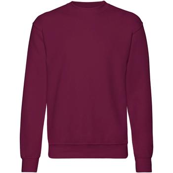 Vêtements Homme Sweats Fruit Of The Loom 62202 Bordeaux