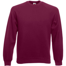 Vêtements Homme Sweats Fruit Of The Loom Raglan Bordeaux