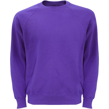 Vêtements Homme Sweats Fruit Of The Loom Raglan Violet
