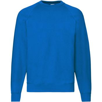 Vêtements Homme Sweats Fruit Of The Loom Raglan Bleu roi