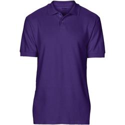 Vêtements Homme Polos manches courtes Gildan Softstyle Violet foncé