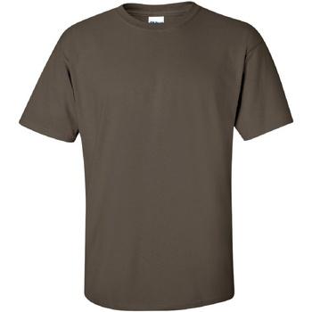 Vêtements Homme T-shirts manches courtes Gildan Ultra Olive