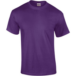 Vêtements Homme T-shirts manches courtes Gildan Ultra Violet