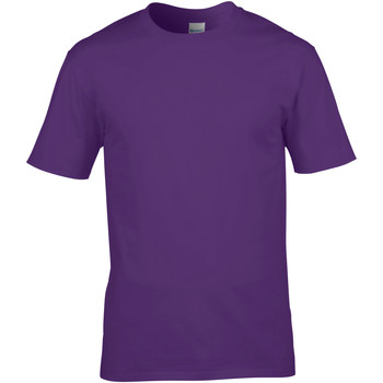 Vêtements Homme T-shirts manches courtes Gildan 4100 Violet