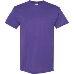 Vêtements Homme T-shirts manches courtes Gildan Heavy Lilas