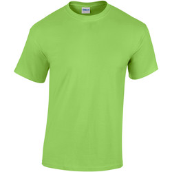 Vêtements Homme T-shirts manches courtes Gildan Heavy Vert citron