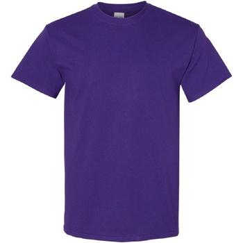 Vêtements Homme T-shirts manches courtes Gildan Heavy Violet