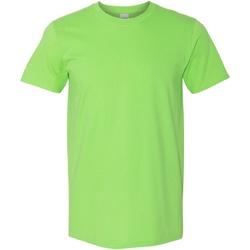 Vêtements Homme T-shirts manches courtes Gildan Soft-Style Vert pâle