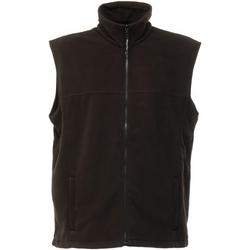 Vêtements Homme Polaires Regatta TRA700 Noir