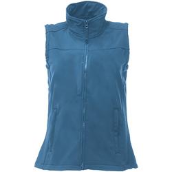 Vêtements Femme Gilets / Cardigans Regatta TRA790 Bleu