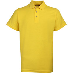 Vêtements Homme Polos manches courtes Rty Workwear Heavyweight Tournesol